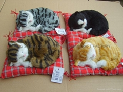sleeping  cat (Hot Product - 1*)