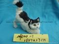 fur animal cat
