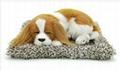syntheic fur animal  sleeping dog