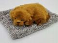 syntheic fur animal  sleeping dog 10