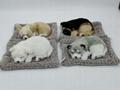 syntheic fur animal  sleeping dog 12