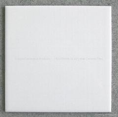"150x150mm(6""x6"") Ceramic Wall Tiles"