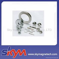 Customized Shape NdFeB Magnet