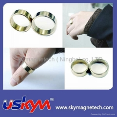 Ring NdFeB Magnet