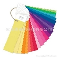 nylon brights set