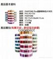 彩通Plus塑胶标准色片系列 2