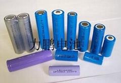 东莞市力鹏电池有限公司