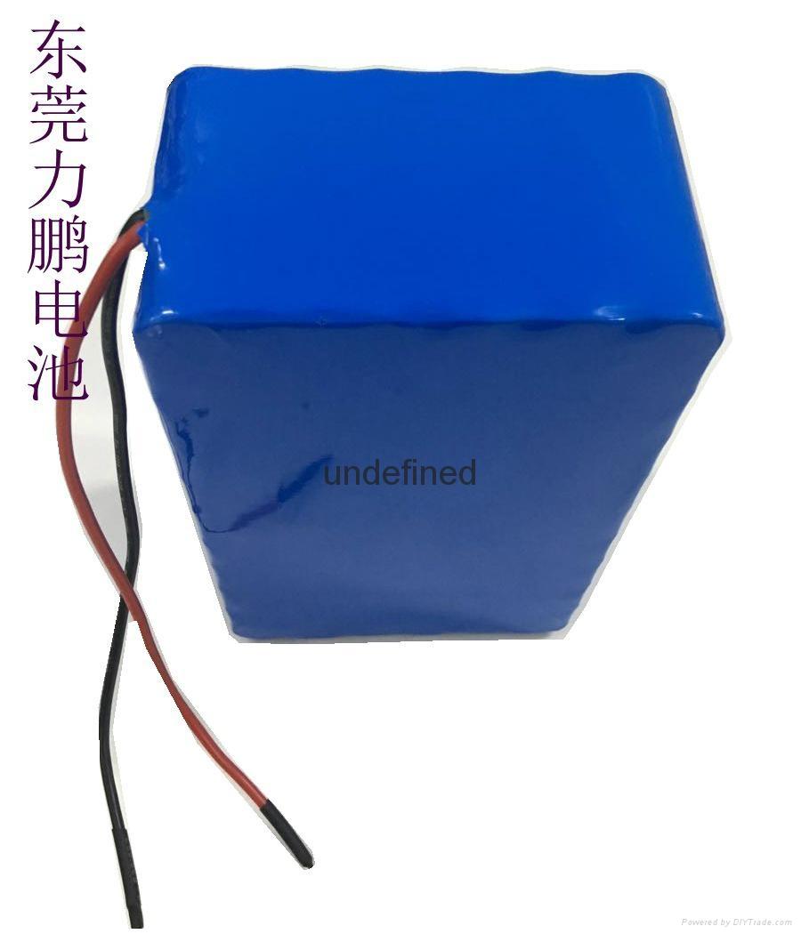 12v20ah 30AH 40AH 60AH太阳能路灯锂电池 7