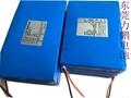 12v20ah 30AH 40AH 60AH太阳能路灯锂电池 5