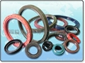Auto seals Motor seals series
