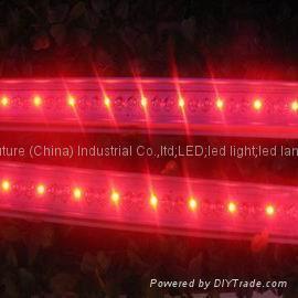 1M  48LEDs waterproof SMD5050 rigid strip light 5