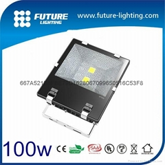 100W  factory price led  flood light  cool white