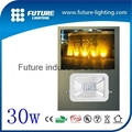 30W LED apple floodlight