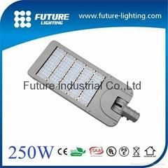 250W led street lamp