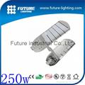 China manufacturer high power 250w led street light