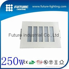 250w industrail cheap price led gas stationled torch light