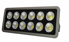 Type1 LED Flood light