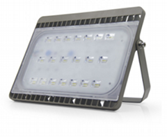 Factory  Driverless led floodlight 50W 1000W