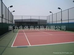 奧力生體育設施有限公司