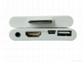 The ipad multi-function adapters, compatible with IPAD1 /2/3   support TV out