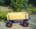TC0802 Kid's Wagon