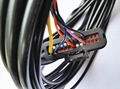 Wiring Harness for Motocycle Cruise Controls