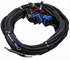 Wiring Harness Assembly for Automotive Aftermarket (Hot Product - 1*)