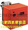安徽燃烧器 1