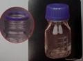 玻璃螺口圆瓶 1