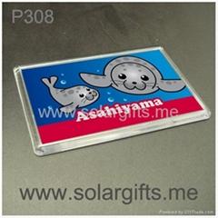 photo insert promotion fridge magnet P308