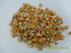玉米-饲料原料