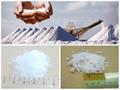 Salt Product