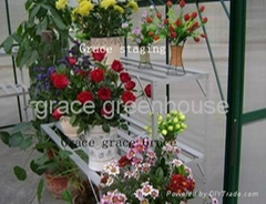 greenhouse flower rack