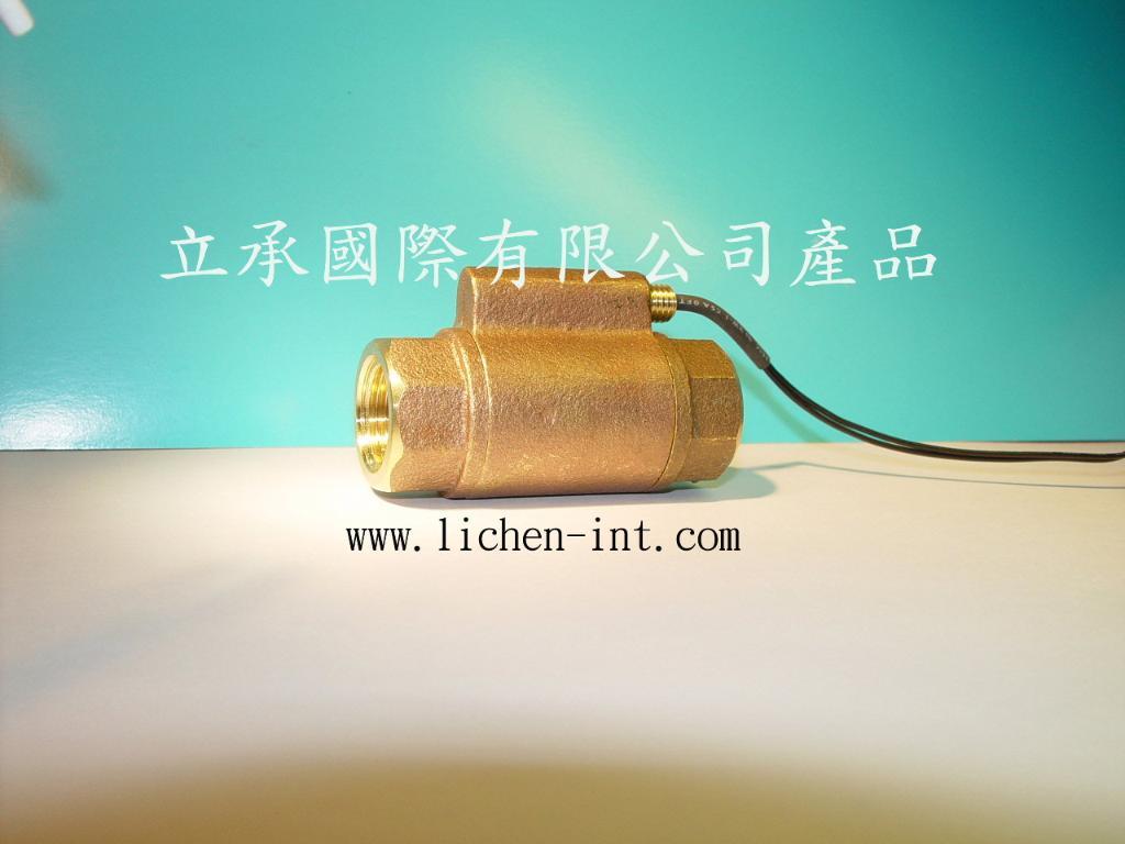 FL-075V( 铜制) 水流开关 1