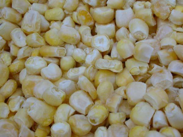 凍干FD甜玉米 1