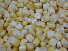 凍干FD甜玉米