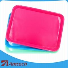 Autoclavable Plastic Tra