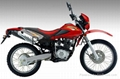 DIRT BIKE/OFF ROAD MOTORCYCLE PT200GY 1