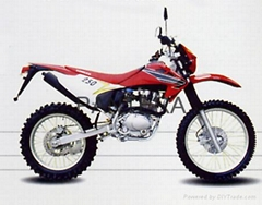 DIRT BIKE/OFF ROAD MOTORCYCLE PT250GY