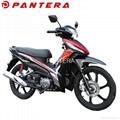 PT110-J6 110cc Chinese Cheap 4 Stroke