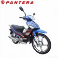 PT110-XY Chinese 110cc Gas Cubs Mini