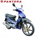 PT110Y-B Chongqing Cheap 110cc Cub Motos