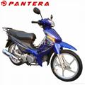 PT110Y-3S Cheap Cub Motocicleta New