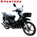 PT110Y-5S China High Quality 110cc Super
