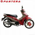 PT110-J3 Africa Market Popular 110cc