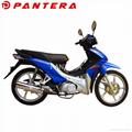PT110-SL 2019 Cheap Cub Moped Motos New