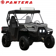 800cc V-Twin Engine UTV
