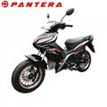 PT110-10Y 50cc 100cc 110cc Motorcycle