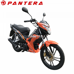 PT110-NR Tunisia Market New Design 110cc Cub Forza Motorcycle