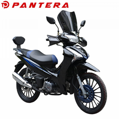 PT110Y-B4 2020 New Design Cub Type China Motorcycle (Hot Product - 1*)
